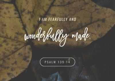 ScriptureArt_0217_-_Psalm_139_14_ESV